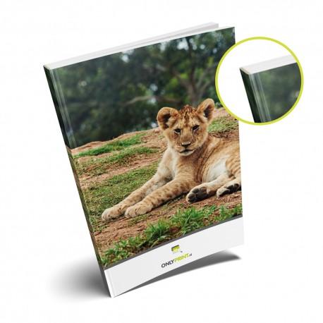 Gebonden Brochures printen