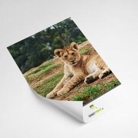 Folders - Losbladig A3/A4/A5